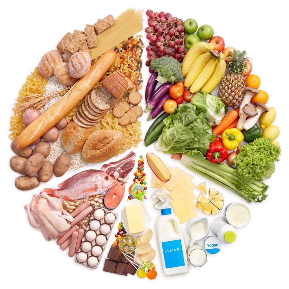 principios básicos de la alimentación