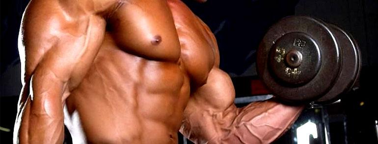 Consejos para ganar músculo