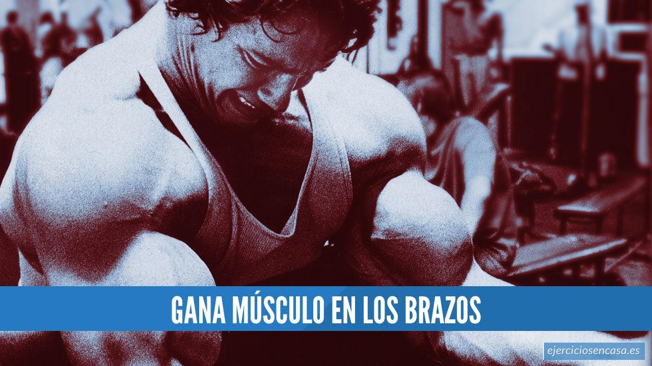 Entrenamiento para ganar músculo en los brazos