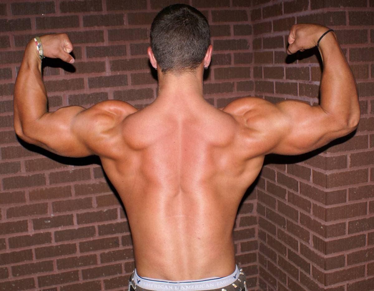 Rutina de ejercicios para bíceps y espalda