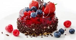 Tarta de proteínas de chocolate y arándanos