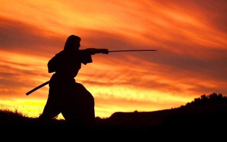 el camino del guerrero