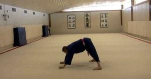 flexiones de judo