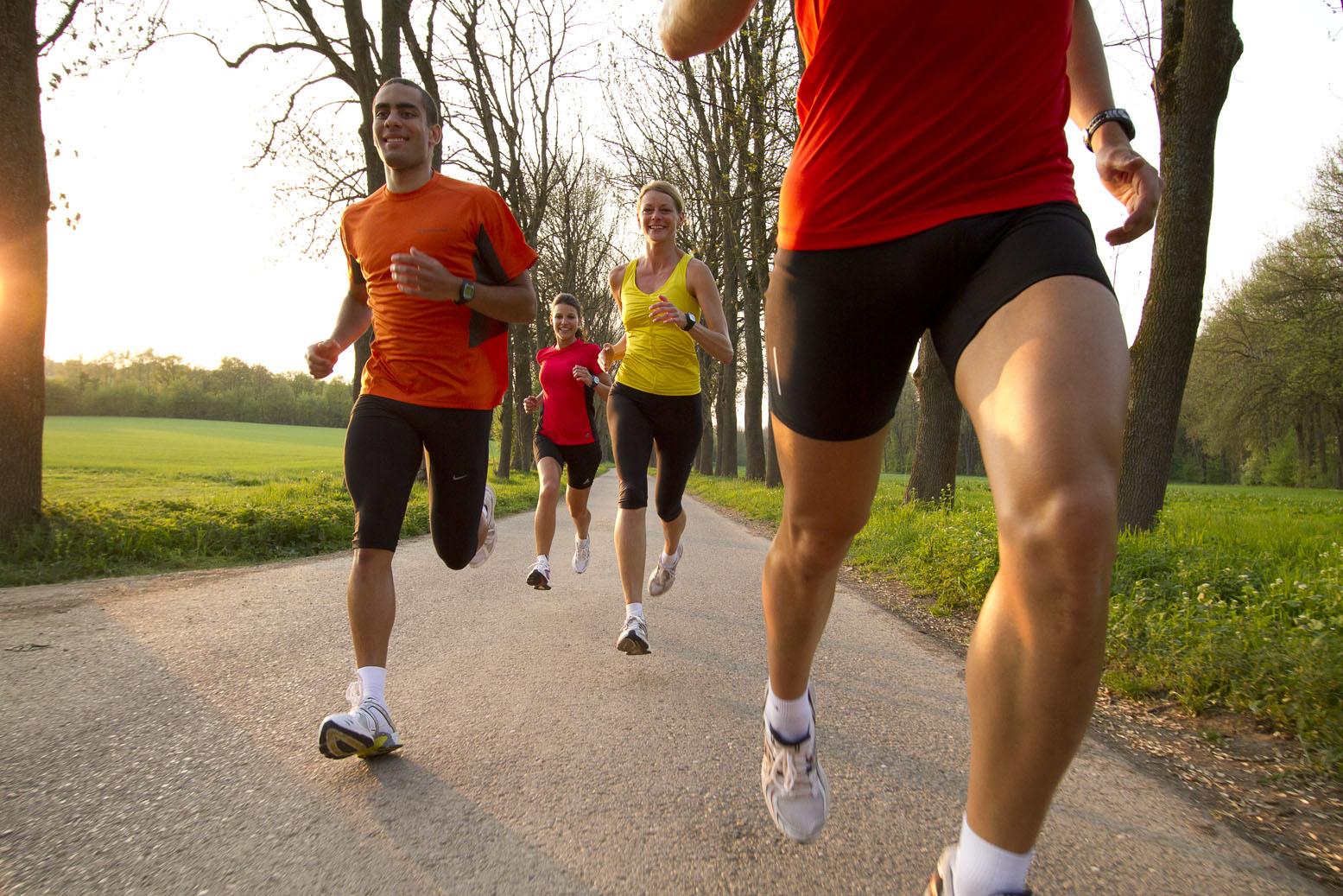 Circuito Significado : Circuito aeróbico ejercicios en casa