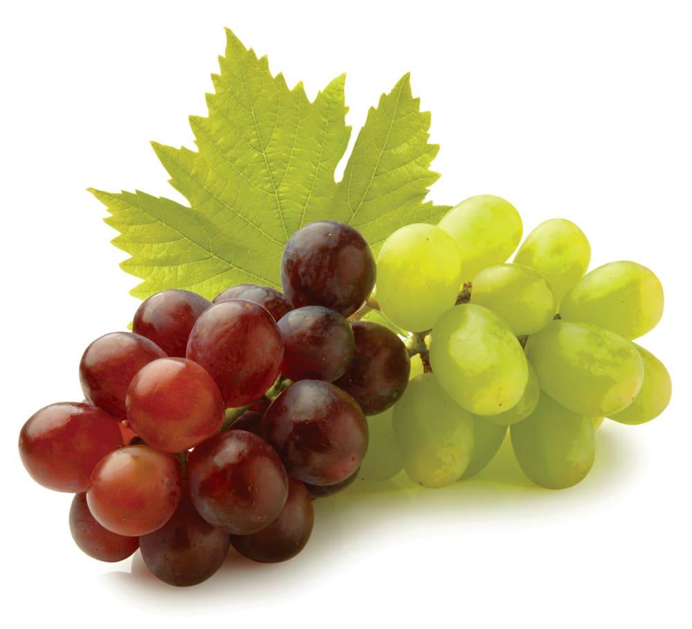 Image Gallery las uvas