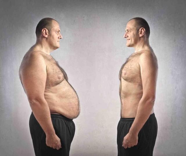 Das, programas para crear dietas gratis dej