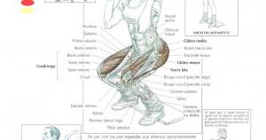Sentadilla frontal