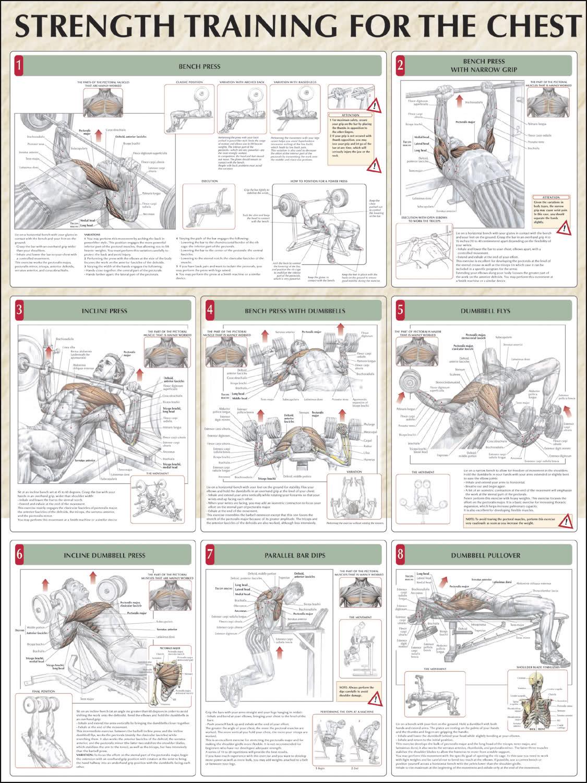 Rutina de ejercicios para juntar el pecho