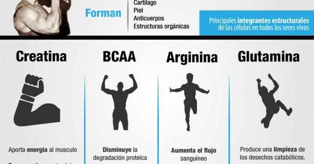 Cuánta proteína tomar para ganar masa muscular y fuerza