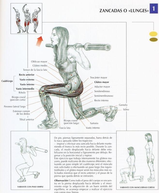 ejercicios para correr