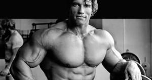 Rutina de espalda y pecho de Arnold Schwarzenegger