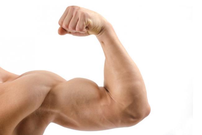 Ejercicios para brazo con peso corporal