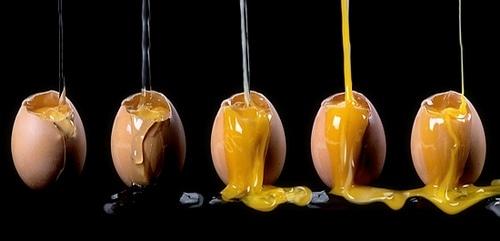 ¿Yema o clara de huevo?