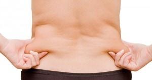 grasa corporal