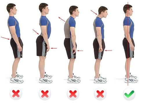 Los ejercicios sobre las maquetas de entrenamiento a la lordosis