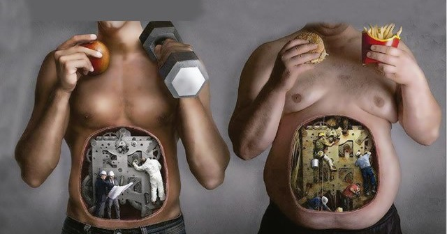 metabolismo rápido