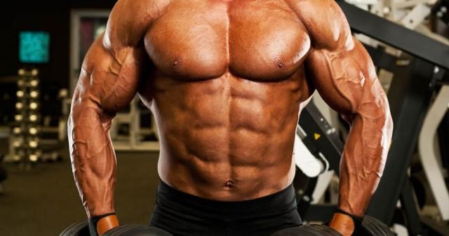 Rutina de entrenamiento de cuerpo entero