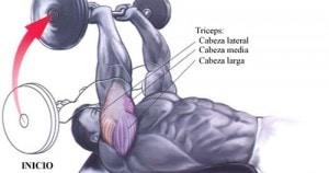 extensión de tríceps completa