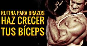rutina-para-brazos-biceps