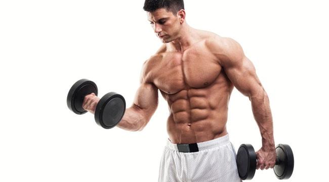 entrenamiento de pesas para principiantes