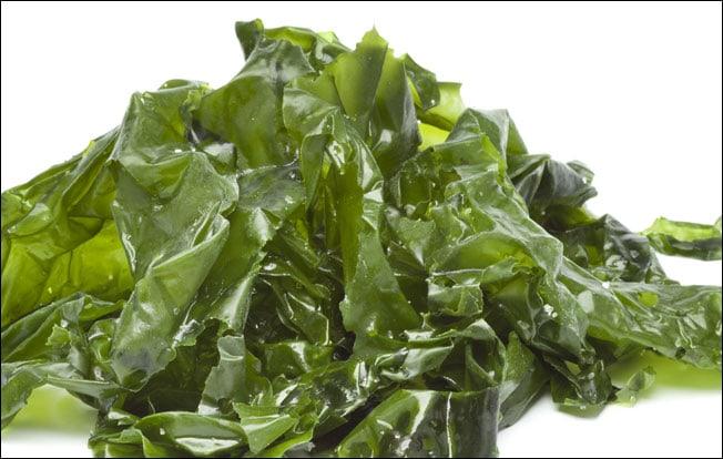 beneficios de las algas