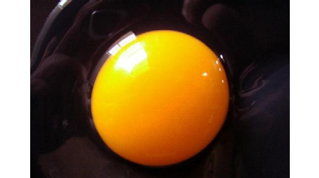 huevo mitos