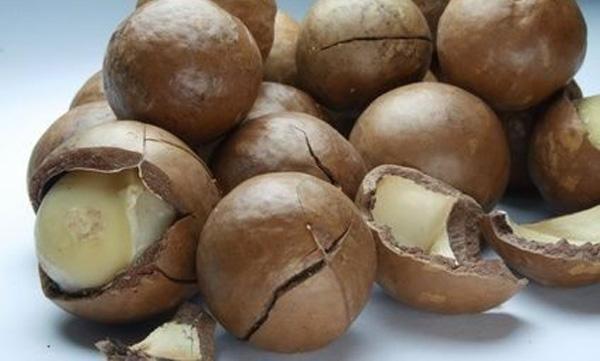 alimentos-para-reducir-colesterol