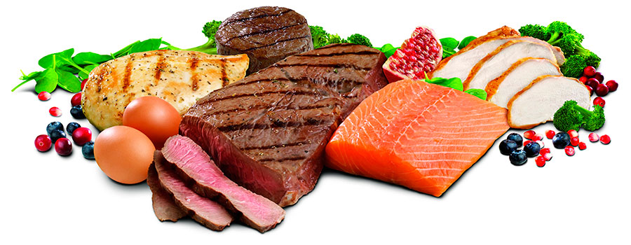 ¿Las proteínas ayudan a perder peso? - Ejercicios En Casa