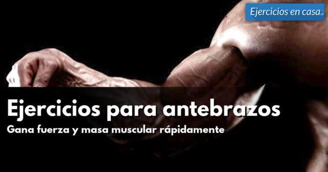 ejercicios-para-antebrazos
