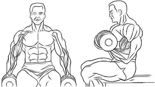 ejercicios-para-brazo-en-casa