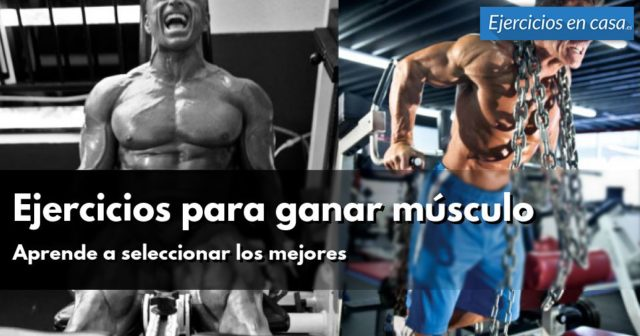 ejercicios-para-ganar-musculo