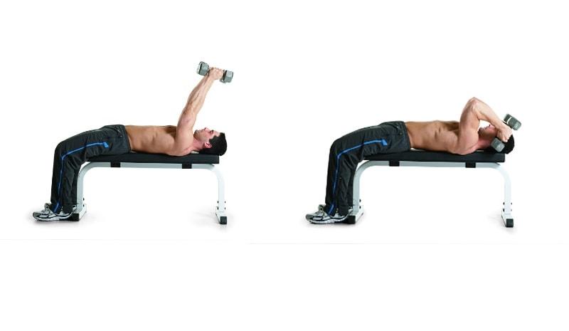Ejercicios de gimnasio con pesas y rutinas gratis