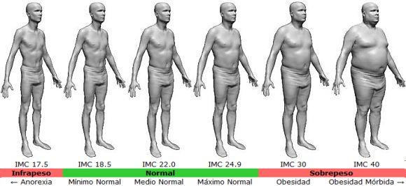 índice de grasa corporal