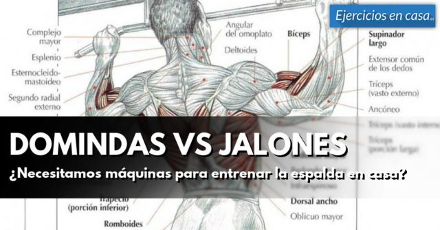 dominadas vs jalones