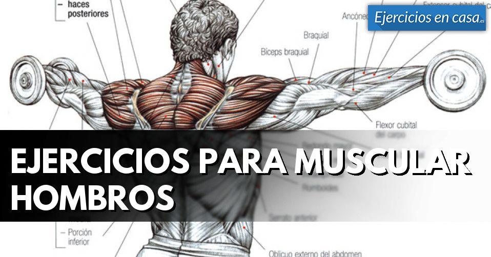 Qué ejercicios para hombro pueden ayudarnos a ganar músculo ...
