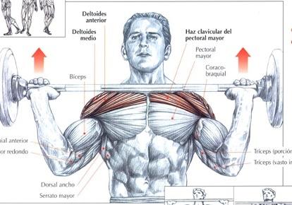 Ejercicio para hacer crecer hombros