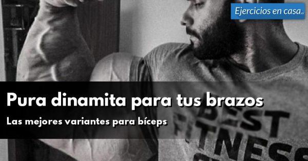 Dinamita para tus bíceps: Anatomía y mejores ejercicios de brazo ...