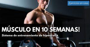 atleta realizando curl de bíceps con barra