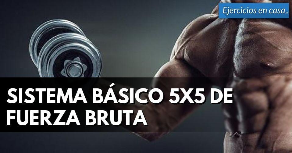 Sistema básico de entrenamiento 5x5
