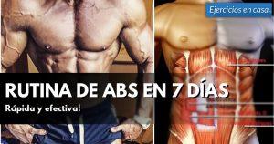 abdominales músculo
