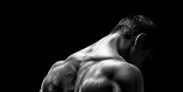 desarrolla tu espalda